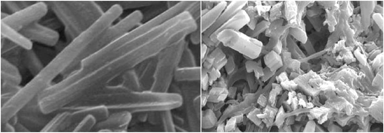 Polymer grains in Radiochromic film under electron microscope.