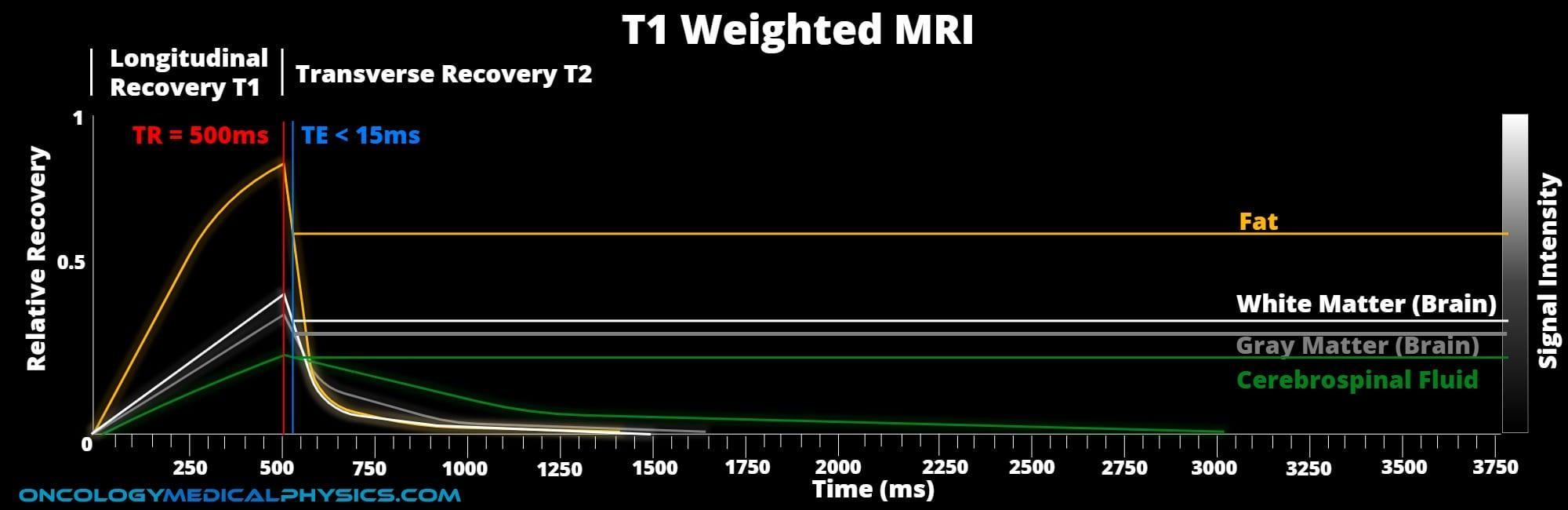 T1 weighting TE and TR MRI diagram