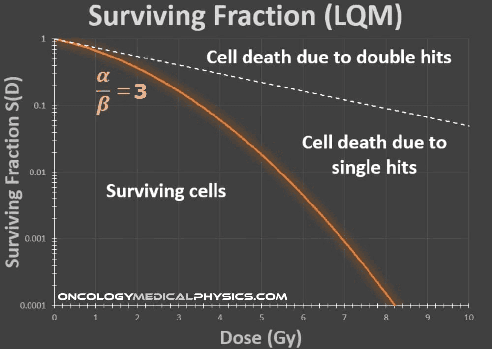 The cell survival curve in the linear quadratic model.